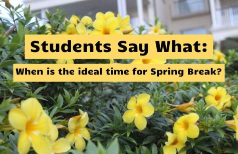 Students Say What: When is the ideal time to have Spring Break?