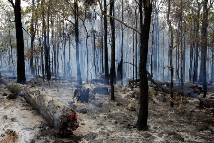 An+example+of+the+destruction+accompanied+by+the+bushfires+in+Australia.