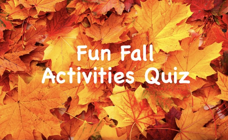 If youre wondering what fall activity best suits you, this quiz is for you!